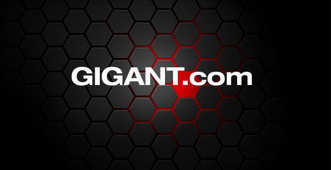 Umfirmierung der gigant - Trenkamp & Gehle in GIGANT GmbH und Umstellung auf neue Domain www.gigant.com